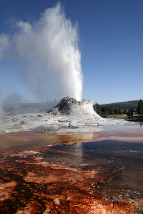 Yellowstone - Castle Geyser, Upper Geyser Basin near Old Faithful, Yellowstone National Park