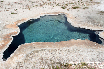 Yellowstone - Blue Star Spring, Upper Geyser Basin near Old Faithful, Yellowstone National Park