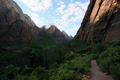 USA - View back along the West Rim Trail, looking down Zion Canyon