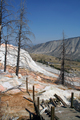 Yellowstone - Broken boardwalk, Canary Spring, Upper Terrace Drive, Mammoth Hot Springs, Yellowstone National Park